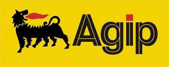 Nigerian Agip Exploration NAOC logo